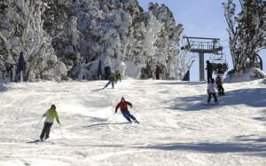 thredbo ski