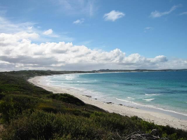 L'Île Kangourou, au large de l'Australie-Méridionale